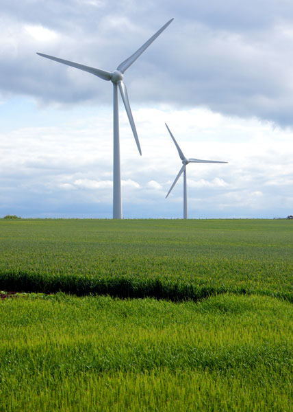 In the race to transition from fossil fuels to renewable sources of energy and avoidrunaway climate change, wind has opened a wide lead on both solar and geothermal energy.